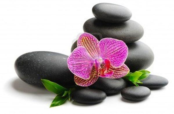 pierres-orchidee600x394