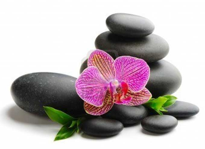 pierres-et-orchidee680x496